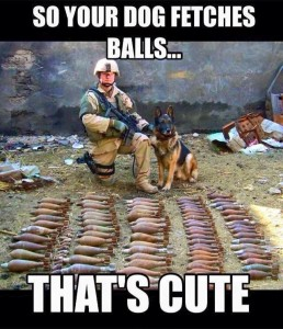 War dogs_Cute